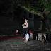 """[Ελλάδα] Μύλος των Ξωτικών:""""Μέρες Παραμυθιού""""!"""