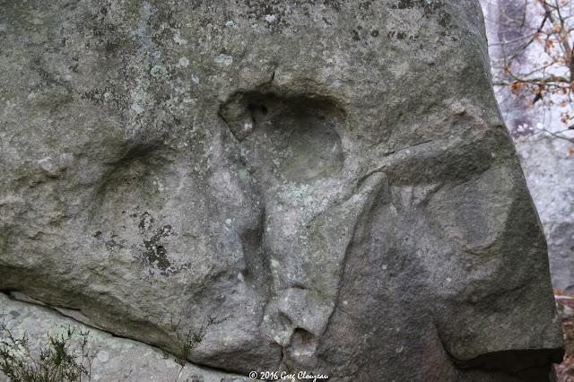 Face à face dans les Rocher du Cuvier à Fontainebleau, (C) Greg Clouzeau