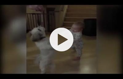 https://www.youtube.com/watch?v=QCEE_rKjTmo