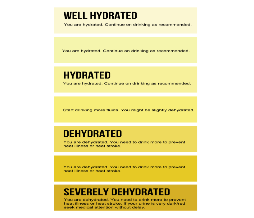 Staying Hydrated This Summer In 5 Easy Steps Sanford