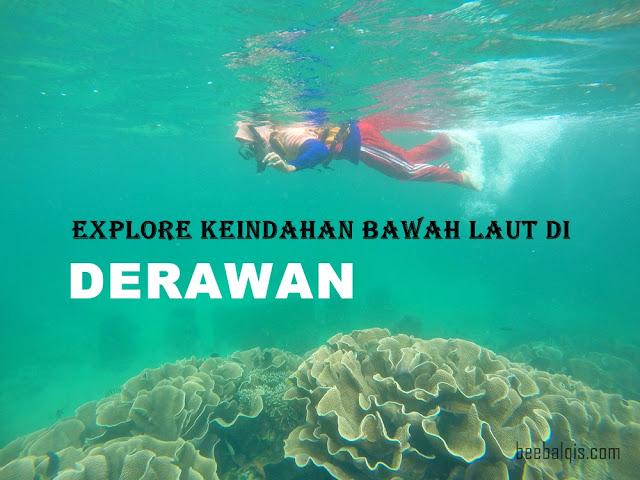 Explore Keindahan Bawah Laut di Derawan