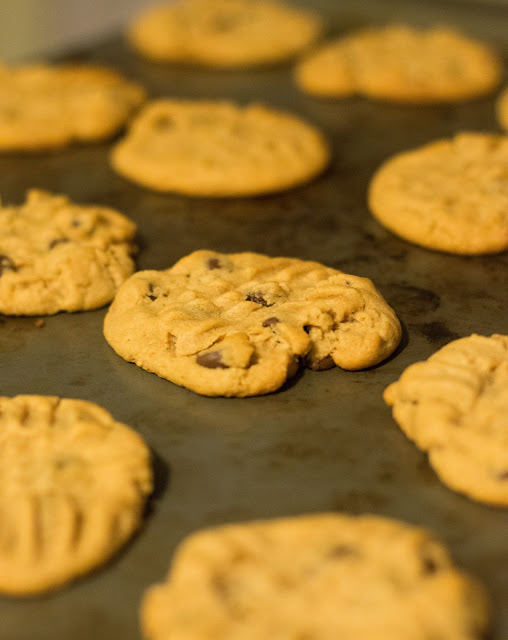 cookies, recipe, browned butter, easy recipe, cookie, chocolate chip, chocolate chip cookie,
