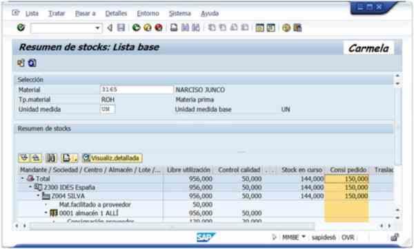 Transacción MMBE: Resumen de Stocks - Consultoria-SAP