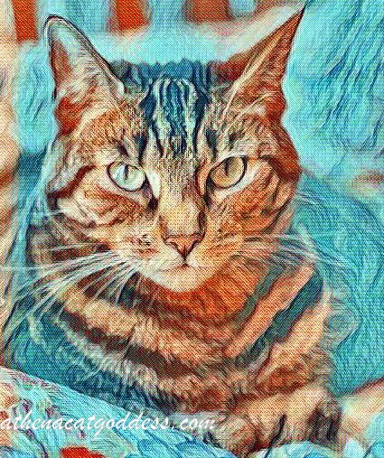 Caturday Art Van Gogh style