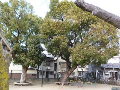 柴島神社公園のブランコ