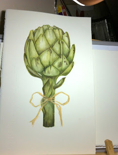 Artichoke botanical art,billy showell,