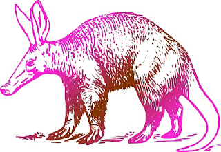 The aardvark is confounding to evolutionists for several reasons, which show that it is the product of design, not naturalistic processes.
