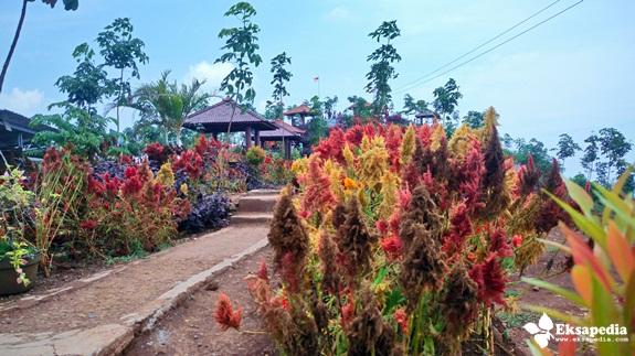 Srigunung Kabupaten Batang