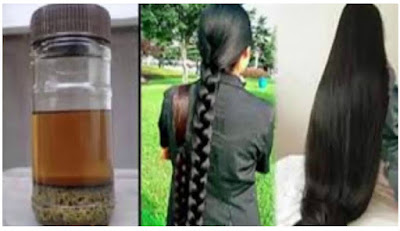 Hair loss is a sensitive number for both genders Ayurvedic Hair Massage Oil  Ayurvedic Pilus Massage Crude Oil - How To Brand Pilus Oils At Abode - For Long & Shiny Hair