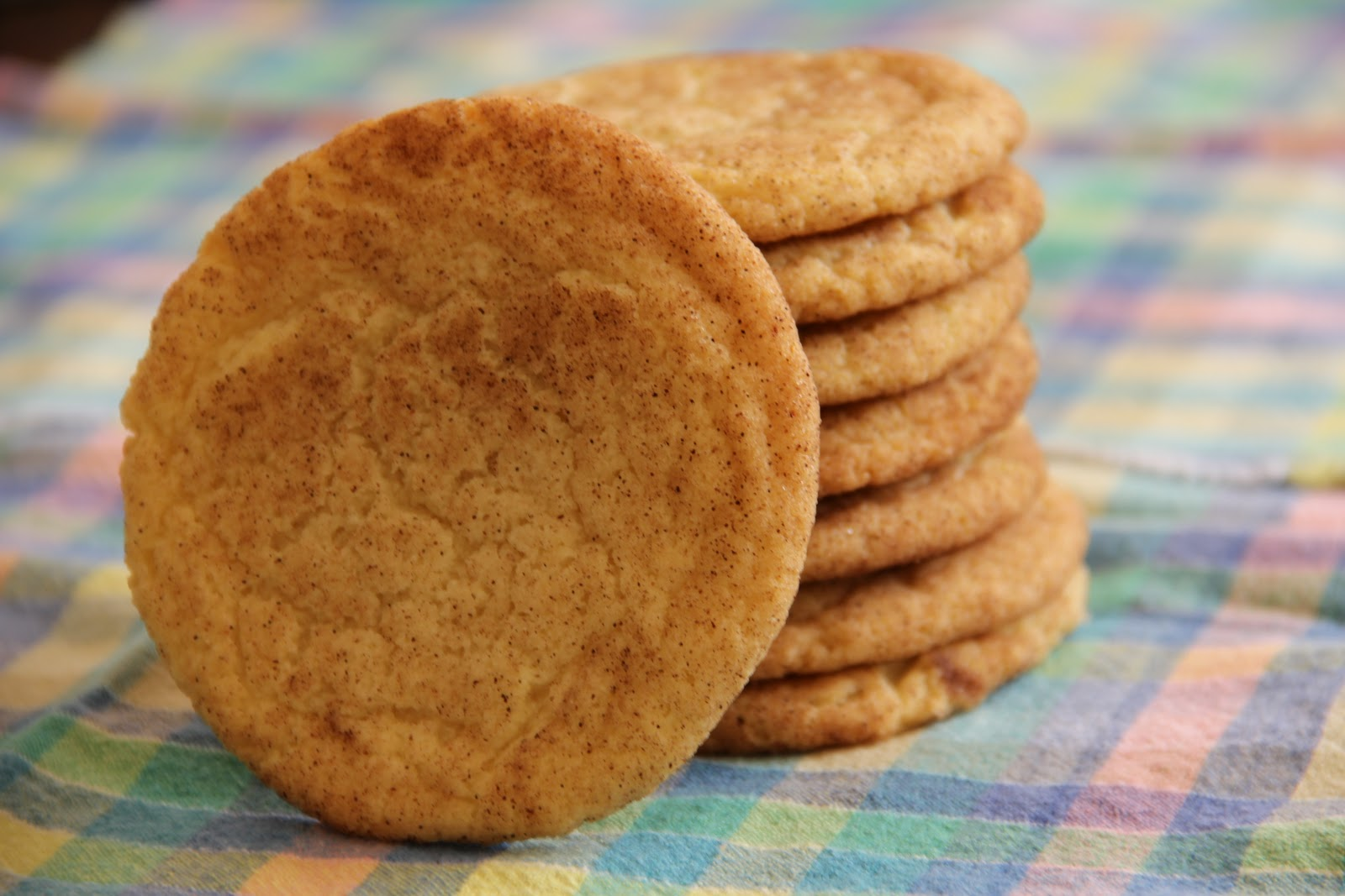America S Test Kitchen Snickerdoodle Cookies