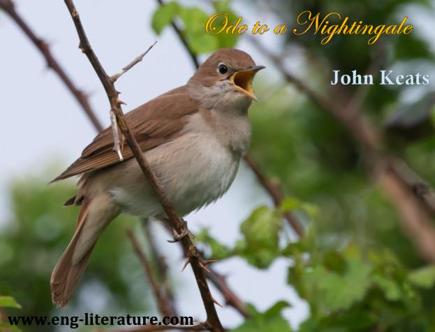 "Is Keats' ""Ode to a Nightingale"" a poem of escape or a reflection of human experience? or How does Keats explore the capacity of the imagination to transcend reality in ""Ode to a Nightingale""?"