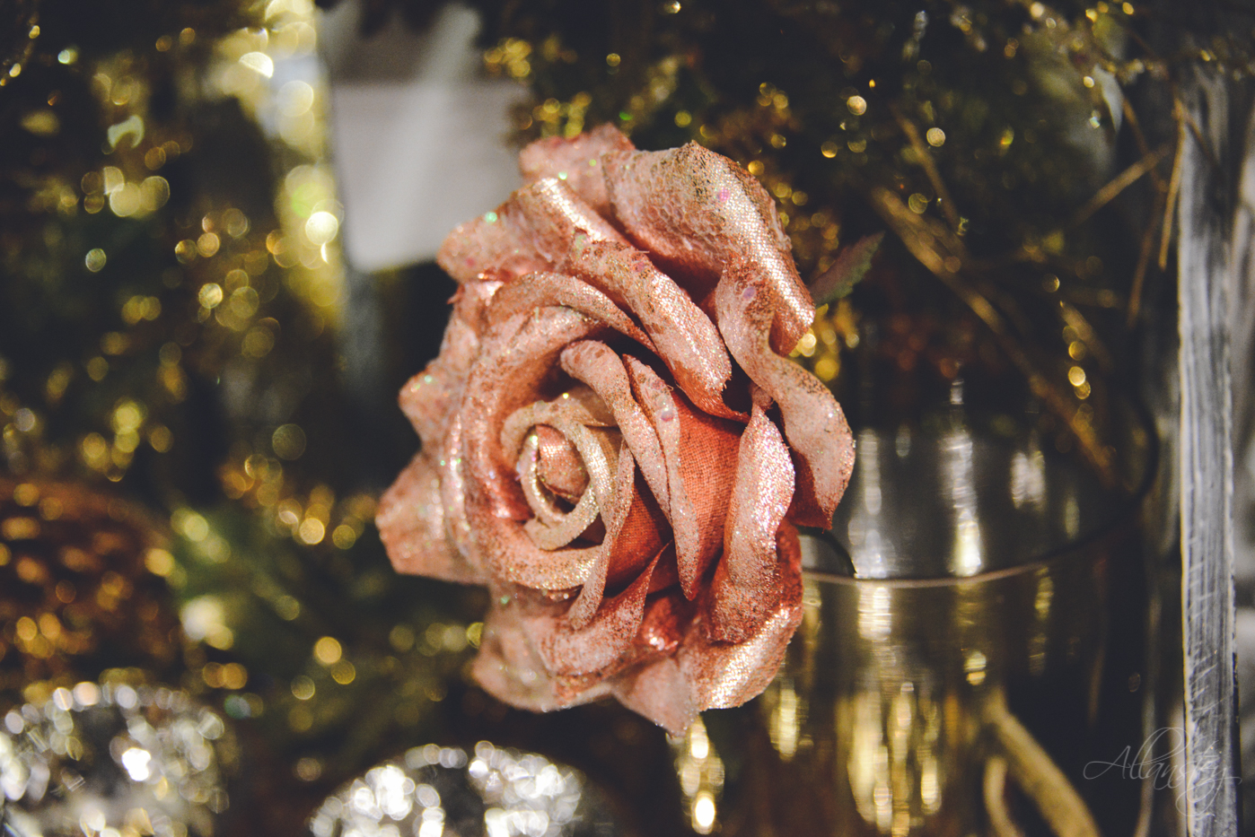 rose decoration bokeh
