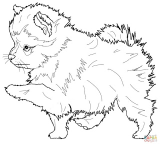 Printable Pom Dogs Coloring Pages