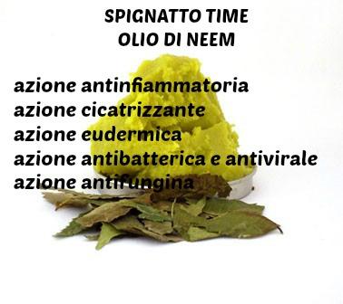 olio di neem, olio di neem proprietà cosmetiche
