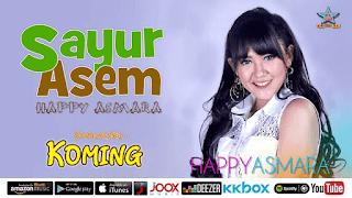 Lirik Lagu Sayur Asem - Happy Asmara
