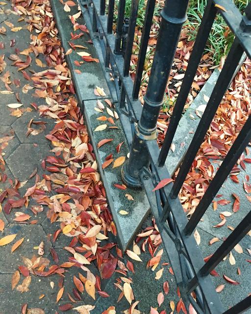 Tori's Pretty Things // The Falling Leaves