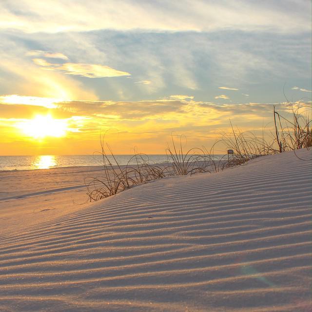 Perdido Key Fl: Florida Beach MLS: Beach Colony Condo For Sale, Perdido