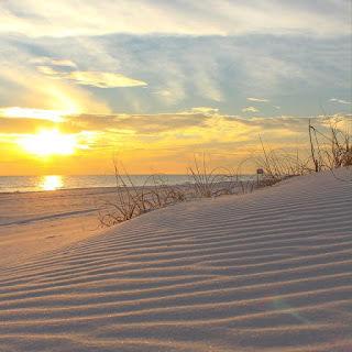 Perdido Key Florida Real Estate, Beach Colony Condo