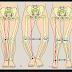 Cara Mengobati Penyakit Tulang Rakitis