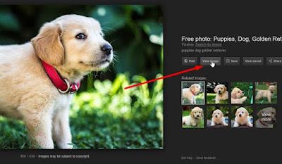 Cara Memunculkan View Image Pencarian Gambar Google