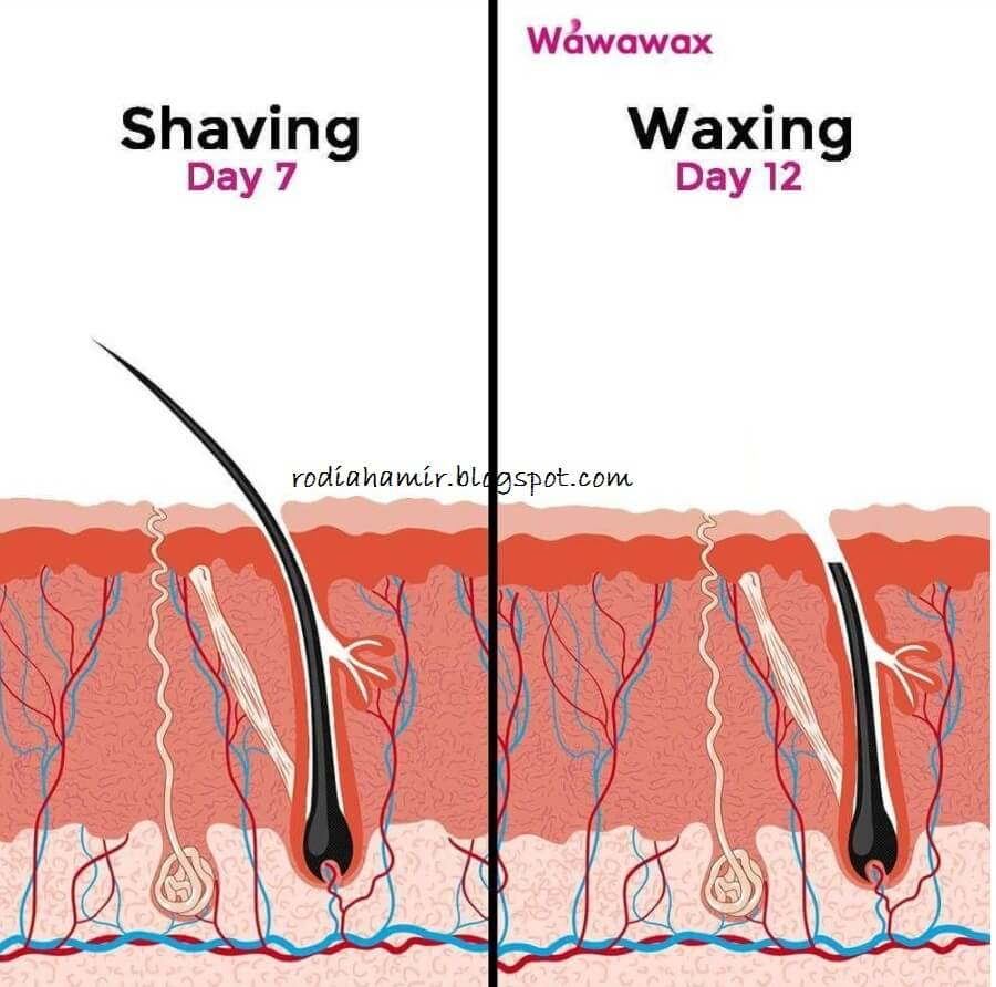 wawawax waxing better
