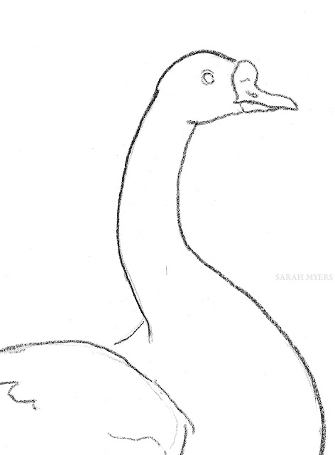 goose, swimming, sarah, myers, bird, line, art, drawing, minimal, minimalism, minimalist, ganso, white, black, simple, series, arte, kunst, dibujo, dessin, detail, close-up, sketch