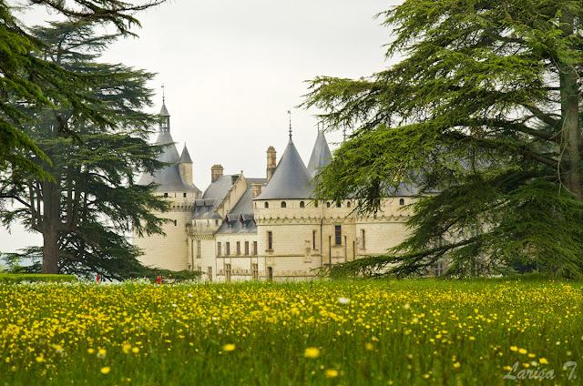 cele mai frumoase castele valea loarei franta