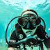 Mergulho em Fernando de Noronha: operadoras, valores e informações