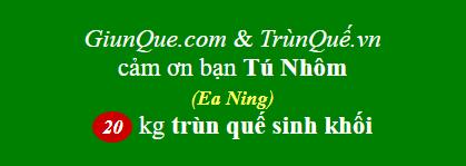 Trùn quế Ea Ning