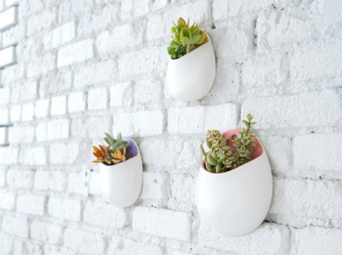 15 ideas para decorar nuestra casa con plantas cactus y - Ideas para decorar paredes con plantas ...