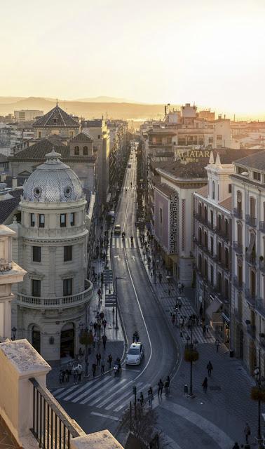 Granada vista desde sus azoteas, Juan Francisco Navarro, Ancile