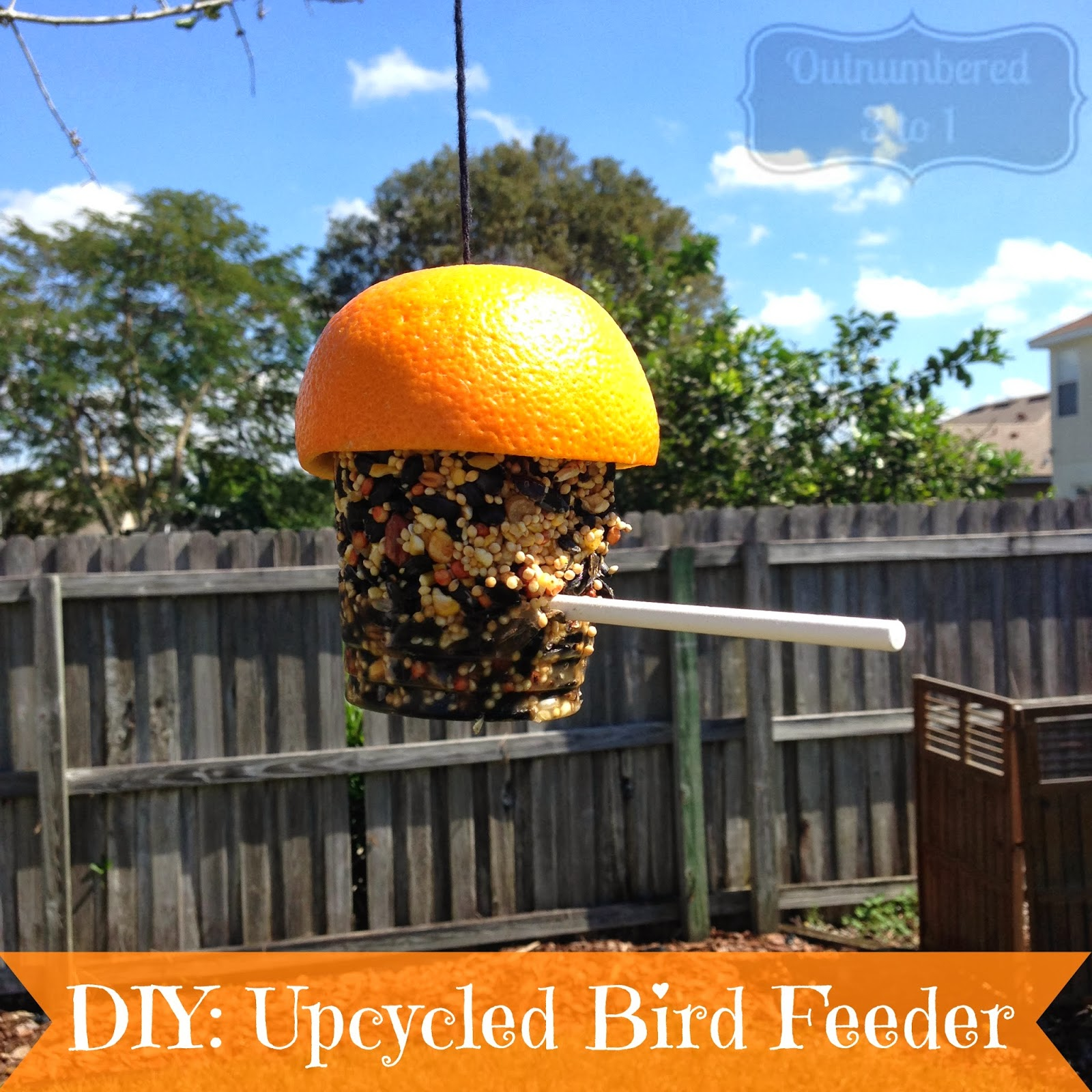 Diy upcycled bird feeder outnumbered 3 to 1 for Upcycled bird feeder