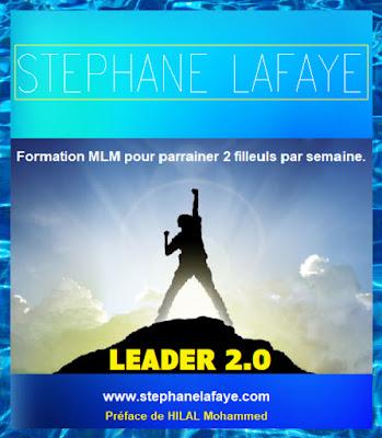 Formation MLM