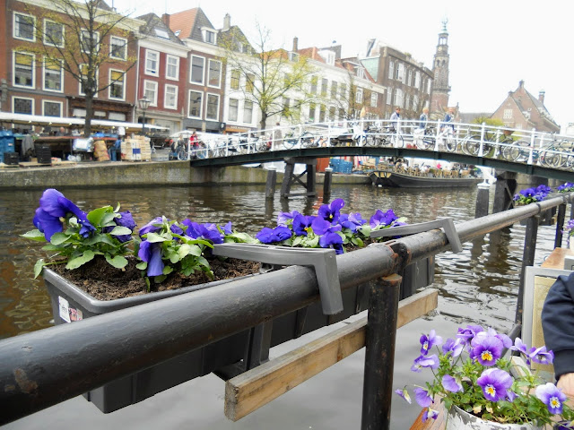 Top places to visit in the Netherlands: purple flowers on a canal boat in Leiden