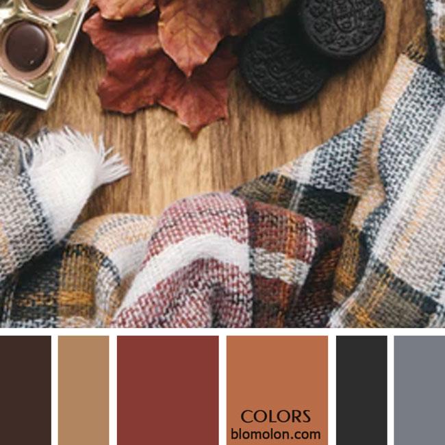 variedad_en_color_paletas_de_colores_37