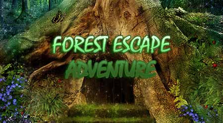 365Escape - Forest Escape Adventure