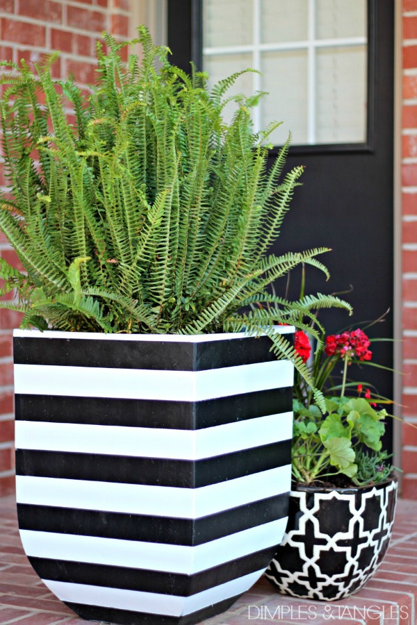 black and white striped flower pot tutorial, kimberly queen fern, brick porch, black door