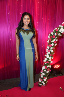 Anupama Parameswaran in lovely shaded gown ~  Exclusive 10.JPG