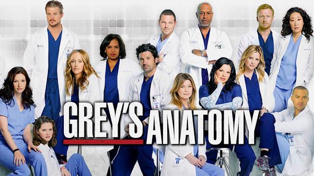 Greys Anatomy Box Set