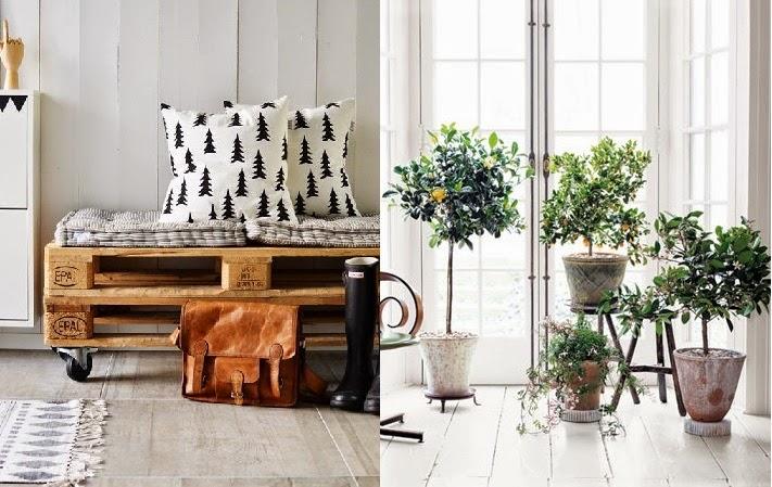 Interior relooking come arredare con le piante for Arredare casa con le piante