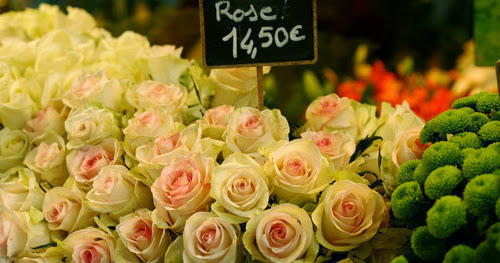Flowers from a Parisian Market