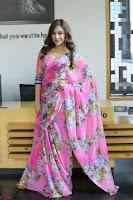 Angela Krislinzki Rogue Movie Fame Telugu Actress in Saree Backless Choli 094.JPG
