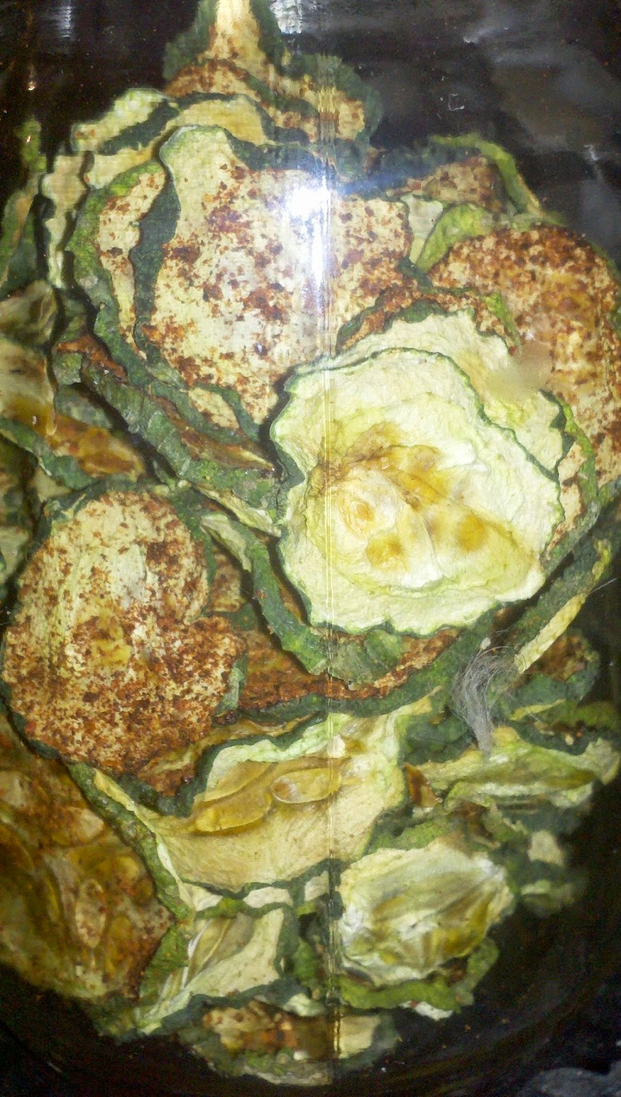 dehydrating cucumbers, how to preserve cucumbers, making cucumber chips, spicy cuke chips