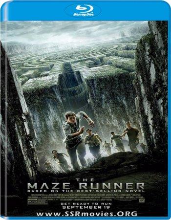 The Maze Runner (2014) English 720p BluRay