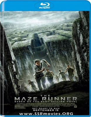 The Maze Runner 2014 BluRay 720p Dual Audio