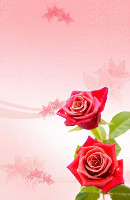 تحميل خلفية اعراس طوليه وردتين حمراء بخلفيه أرجوانيه ,PSD Two Red Roses vertical Background