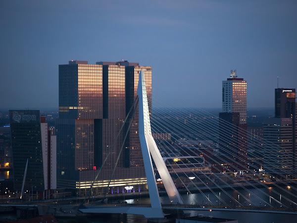 Travel #1 |Rotterdam #1
