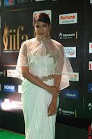 Lakshmi Prasanna in Transparent Saree Spicy Sleeveless Choli at IIFA Utsavam Awards 2017  Day 2  Exclusive 13.JPG