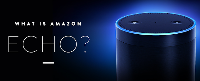 echo amazon wiki pic