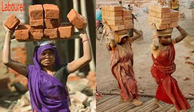 labourer occupation
